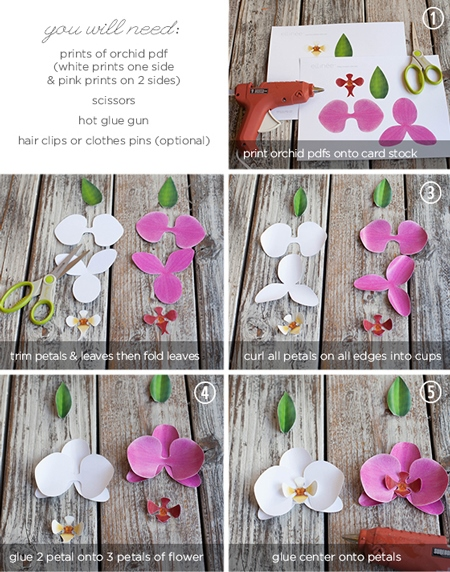orchidee di carta tutorial